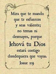 bible verse8