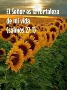 bible verse9
