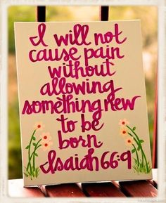 I will not cause pain